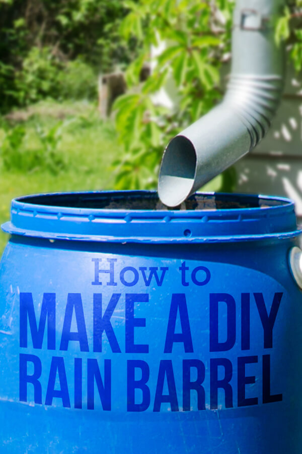 Want to save water but still have enough for your garden? Learn how to build your own rain barrel and start using rainwater for all your outdoor chores.