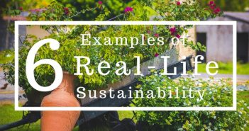 6 Examples of Sustainability