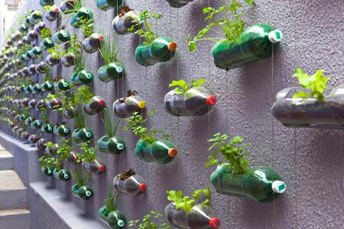 diy recycled plastic bottle vertical garden