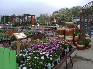 Earl May Nursery & Garden Center
