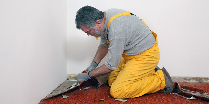 Man Tearing Up Carpet