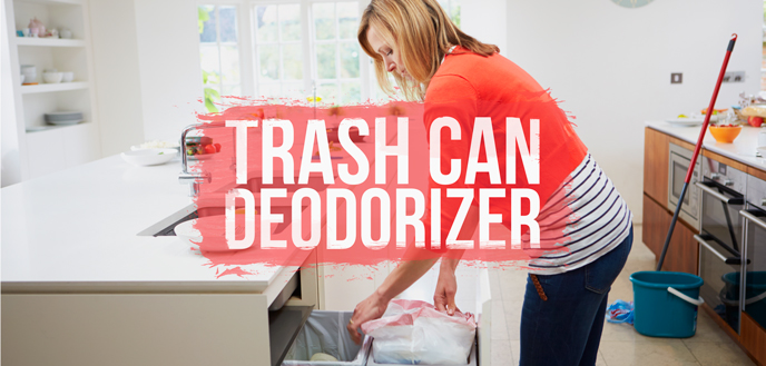 Trash Can Deodorizer