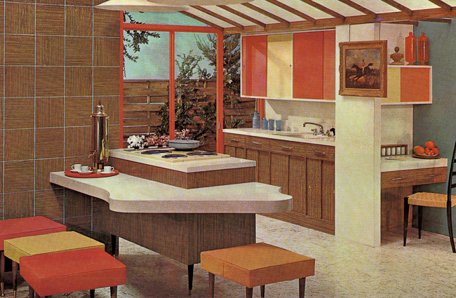 Small Kitchen Renovation: Mid Century Modern Kitchen Example