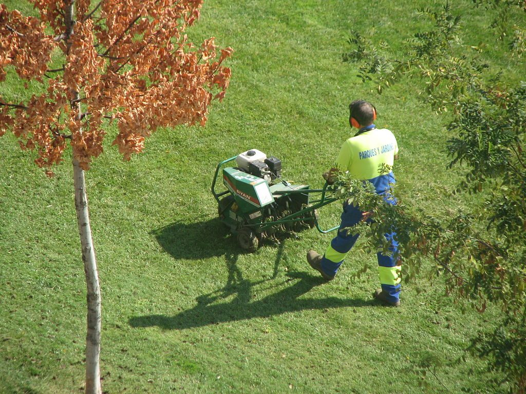 landscaping u0026 lawn maintenance tips how to maintain your lawn