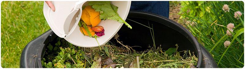 6-food-compost