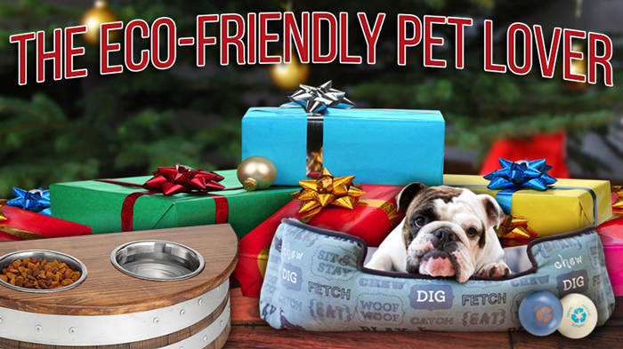 Sustainable Gift Guide: The Eco-Friendly Pet Lover