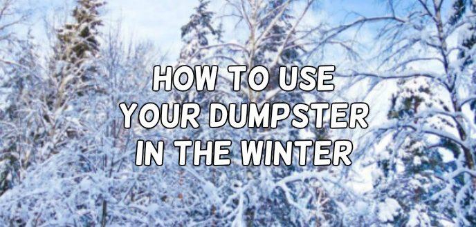 Winter_Dumpster