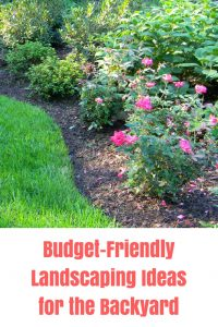 5 Budget Backyard Landscaping Ideas