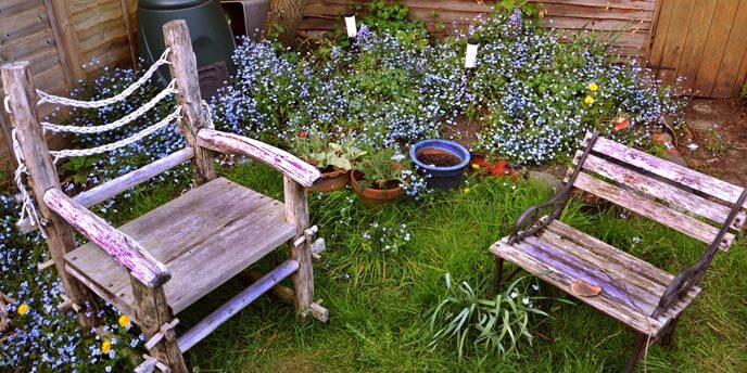 Rustic Outdoor Chairs Made of Wood, Sitting in a Grove of Perennial Ground Cover
