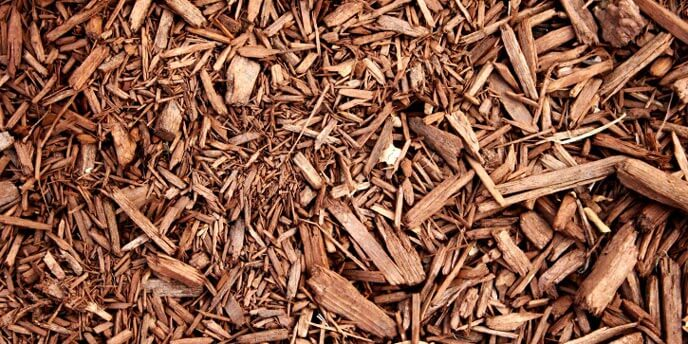Close-Up Shot of Hardwood Mulch
