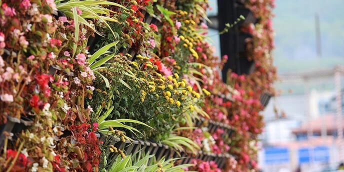 Vertical Garden with Red and Yellow Blooms