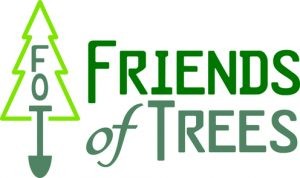 Tree Preservation Tips from Friends of Trees