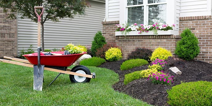Wheelbarrow on Lawn Near Manicured Flower Bed