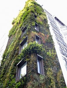 LivingWall_Building