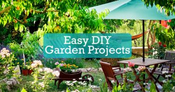 Easy DIY Garden Projects to Improve Your Backyard