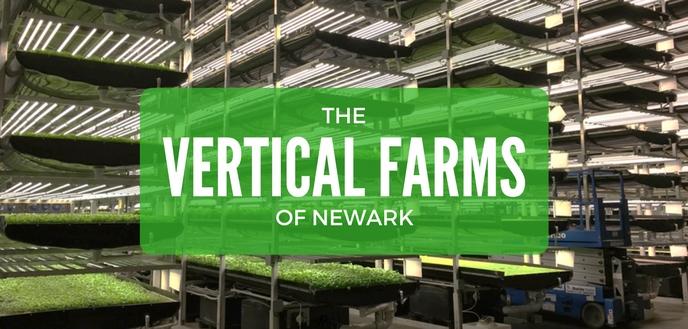 aerofarms vertical farms