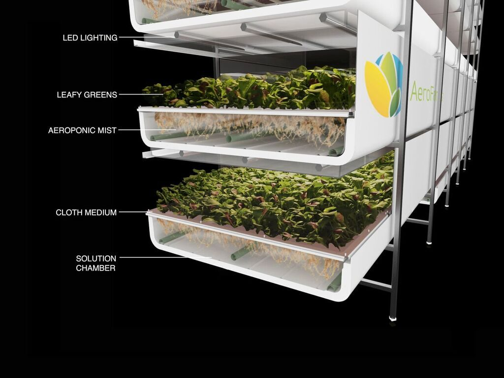 How AeroFarms Creates Vertical Farms from Old Buildings | Budget