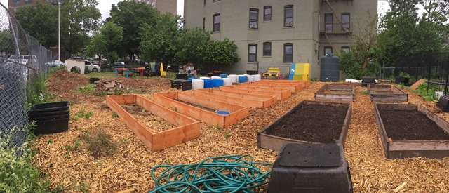 Raised beds in LPCCD's community garden.