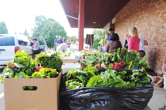 Food Collected by Urban Gleaners
