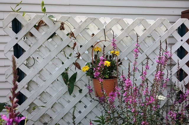 A white lattice fence, surrounded by flowers, provides cheap backyard privacy.