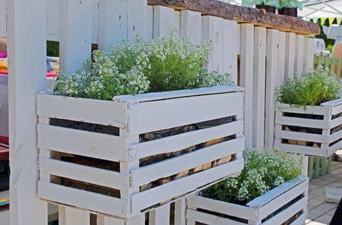 #2 Easy Living Wall. Flower Boxes Attached To A Simple Fence To Create Backyard  Privacy.