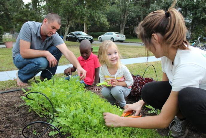 Vegetable Gardens Created from Fleet Farming