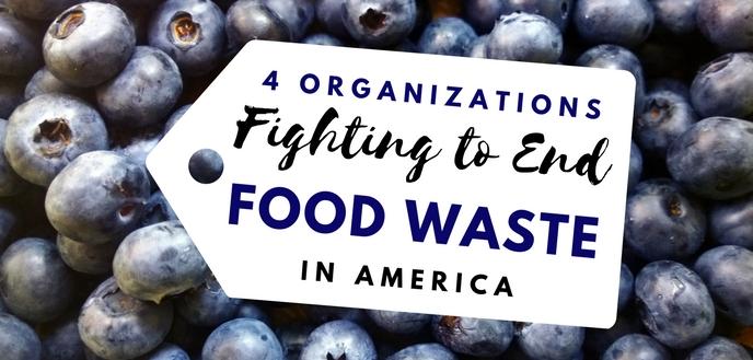 Organizations Fighting Food Waste in America