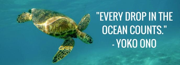 Every Drop in the Ocean Counts