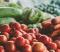 How to Start an Urban Farm