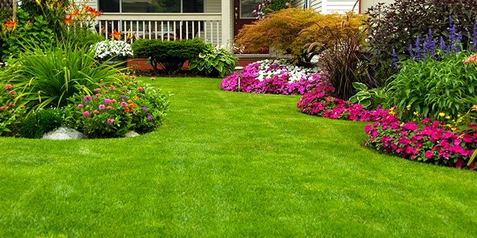 Colorful Flower Beds Outside Home