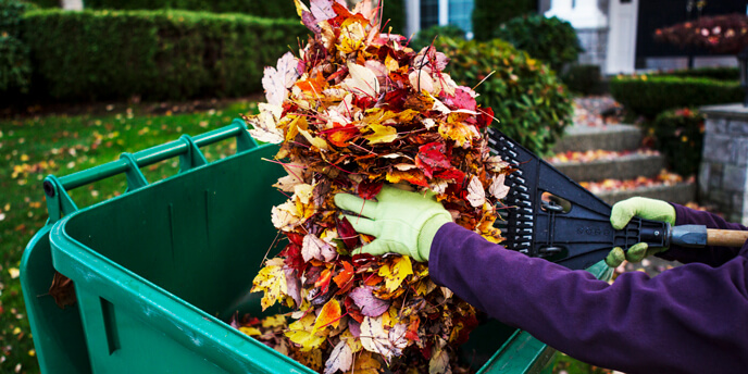 Cleaning up leaves is a big part of fall yard cleanup.