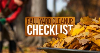 Fall Yard Cleanup