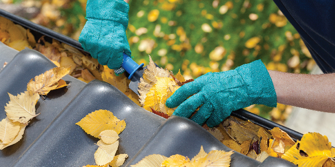 Homeowner Wearing Gloves to Clean Leaves Out of Rain Gutters