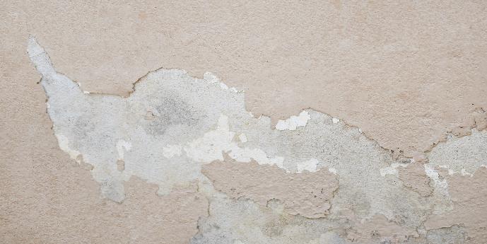 Peeling Wallpaper Showing Signs of Water Damage