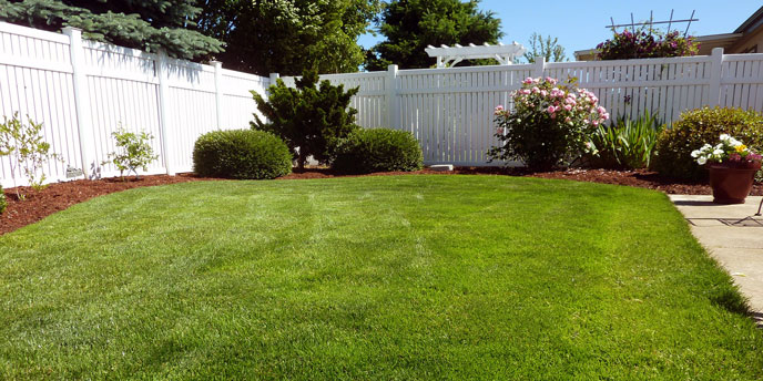 Open Backyard With Vinyl White Fence