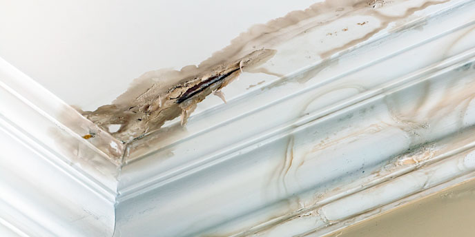 Homeowner Tip: Identify Roof Leaks