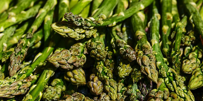 Close Up on a Bunch of Asparagus