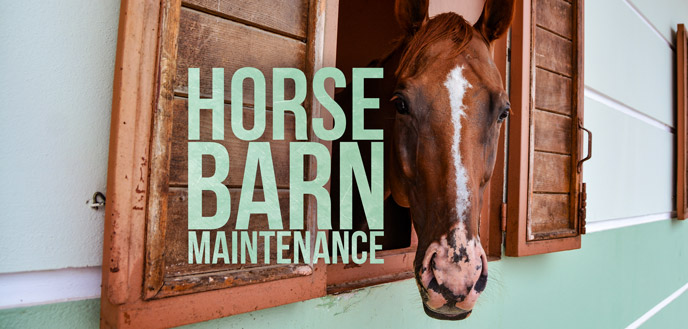 The Top 9 Horse Barn Maintenance Tips for First-Time Horse Owners
