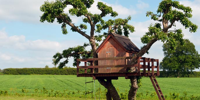 Backyard Treehouse With Rope Ladder
