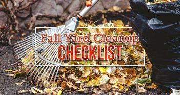 Fall Yard Cleanup and Maintenance Checklist