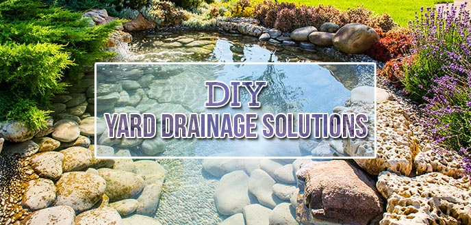 Common Yard Drainage Problems and DIY Solutions