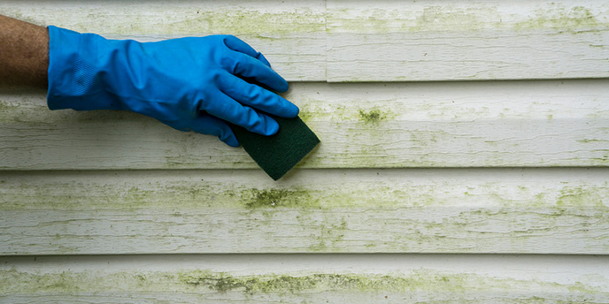 Hand Cleaning Vinyl Siding