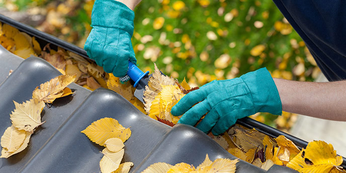Man Removing Leaves From Gutters.