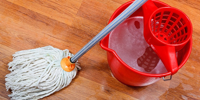 Mop and Bucket to Clean Wet Floors