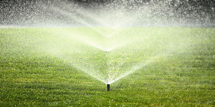 Home Sprinkler System Watering Green Lawn