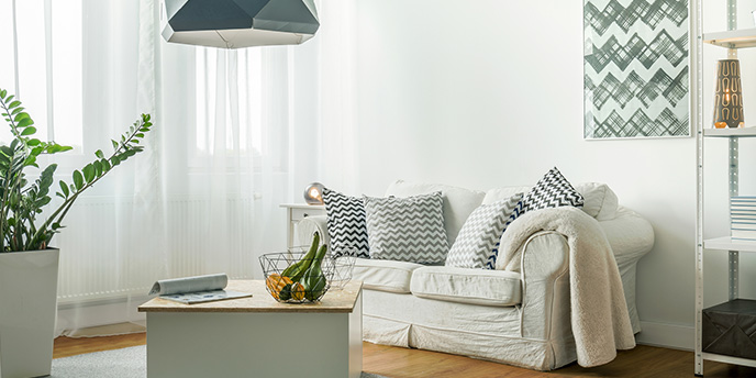 Small, Bright Living Room With Couch and Coffee Table