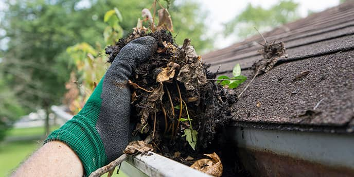 Hand Cleaning Out Gutters in the Summer