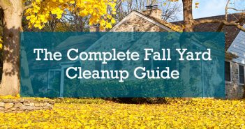 The Complete Fall Yard Cleanup Guide