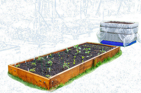 Flower Bed With Plants on Blueprint Background