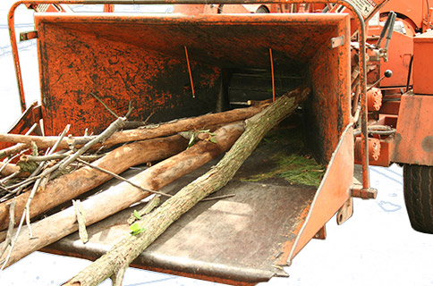 Wood Chipper Filled With Branches